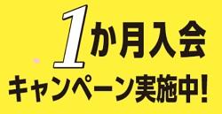 進研ゼミ1ヶ月キャンペーン